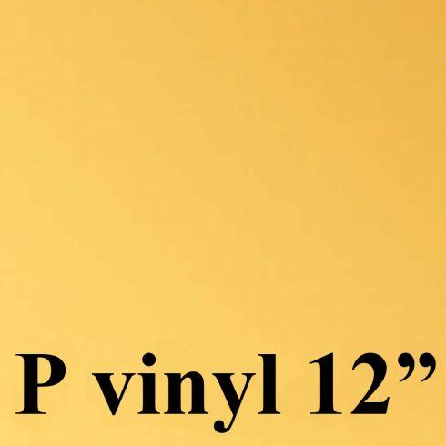 pvinyl12_mattakulta
